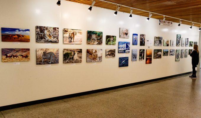 Exhibit at Santa Cruz County Government Building